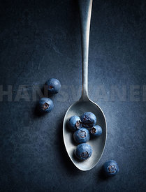 Blueberries on spoon Still Life