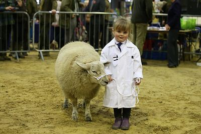 Agricultural and County Shows photos