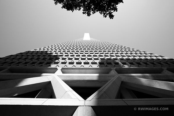 TRANSAMERICA PYRAMID SAN FRANCISCO BLACK AND WHITE