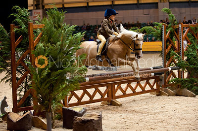 M&M 122cm Working Hunter Pony photos