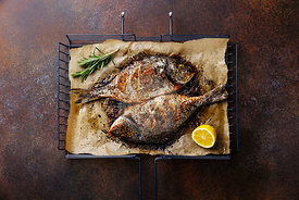 Grilled Fish Dorado on metal grill grid with lemon and rosemary on dark background