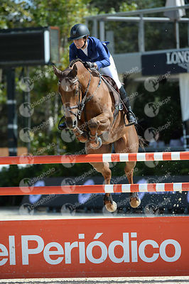 Janika SPRUNGER ,(SUI), ARIS CMS during Coca-Cola Trofey competition at CSIO5* Barcelona at Real Club de Polo, Barcelona - Spain