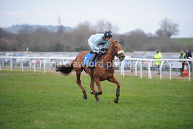 The Parkinson's UK Mares' Maiden Hurdle Race