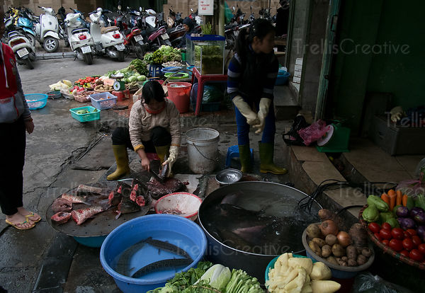 Market vendor cutting fish on street at Hanoi, Vietnam