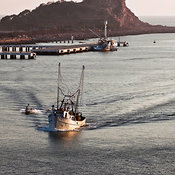 Fishing boats return to port at sunset, Mazatlán, Sinaloa, Mexico