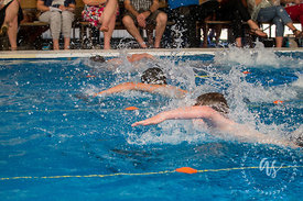 Waihi_Swimming_Sports_2017-37