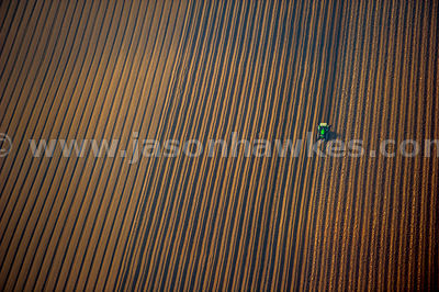 Aerial view of tractor in field