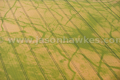 Drainage patterns in field