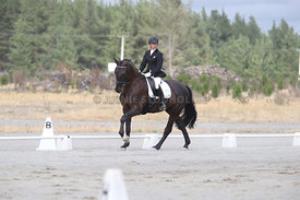 SI_Festival_of_Dressage_310115_Level_1_Champ_0689
