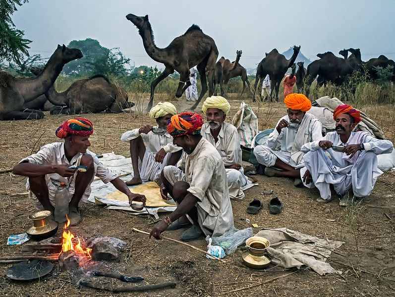 A group of camel herders enjoy their morning tea during the Pushkar camel fair.