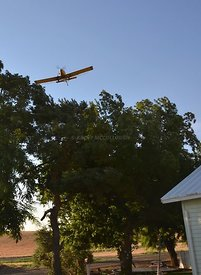 Cropduster over trees