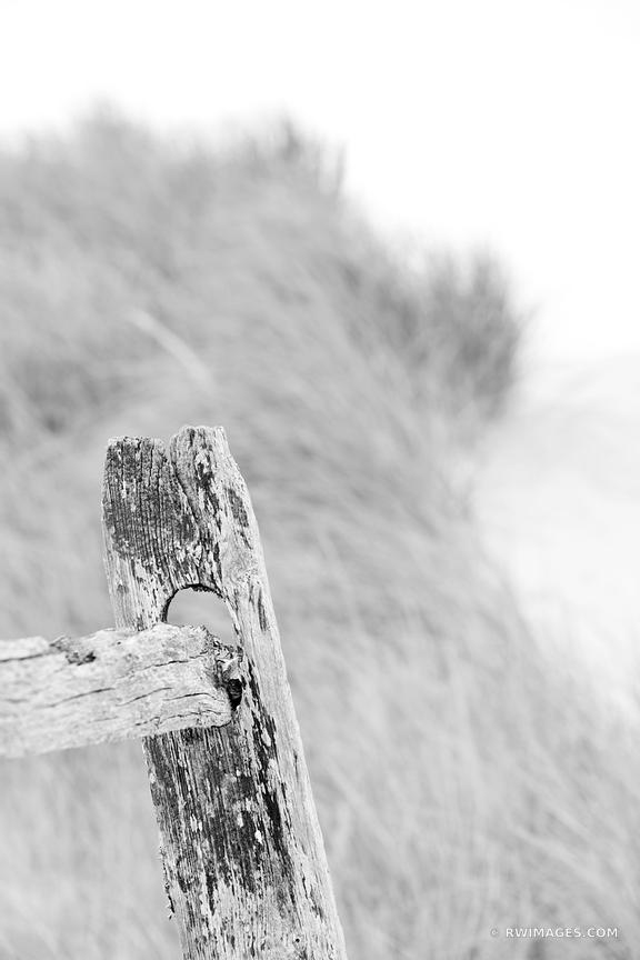 Photo print of weathered fence first encounter beach for Buy fine art photography