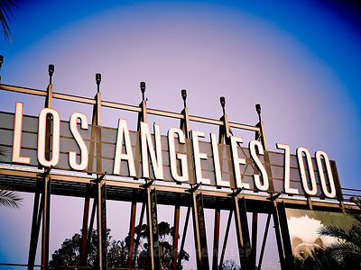 Los_Angeles_July2014_202