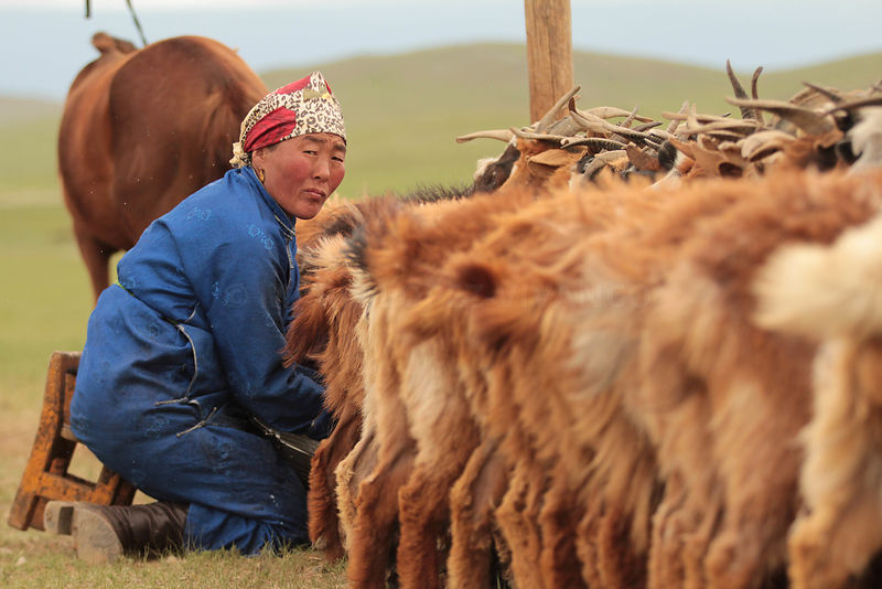 Mongolie photos