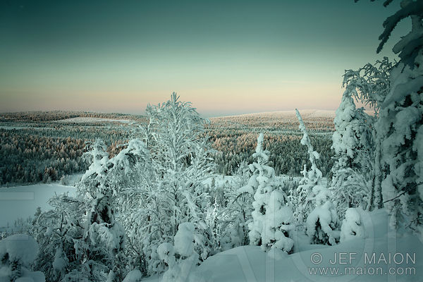 Midwinter by the Artic Circle kuvia