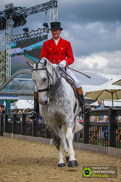 Royal_Windsor_Horse_Show_2017_024