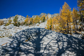 Larch Shadow on Granite Boulder with Autumn Alpine Larches in The Enchantments