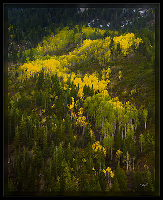 100916_Aspen_Formation-Edit_PD