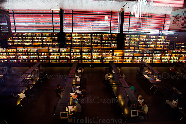 Students study in a modern library filled with rows of books and desks.