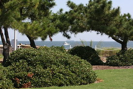 ocean_view_beach_park_boats