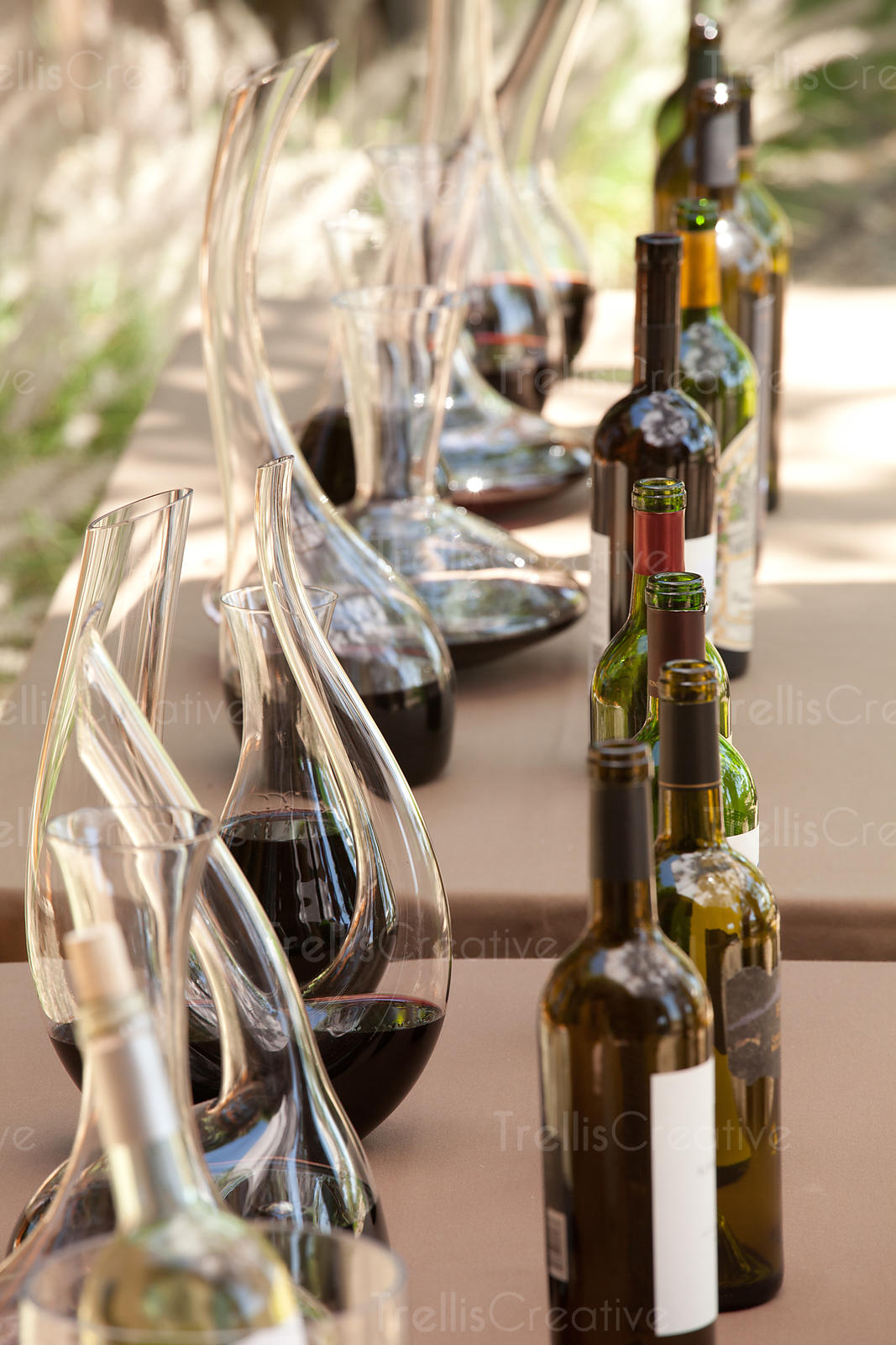 Decanters of red wine with bottles on table in winery