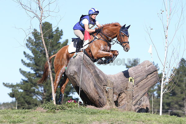CIC3* & CCI2* photos