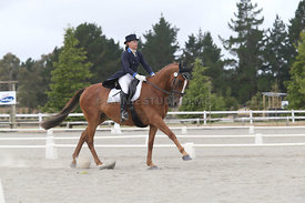 SI_Festival_of_Dressage_310115_Level_8_MFS_1137
