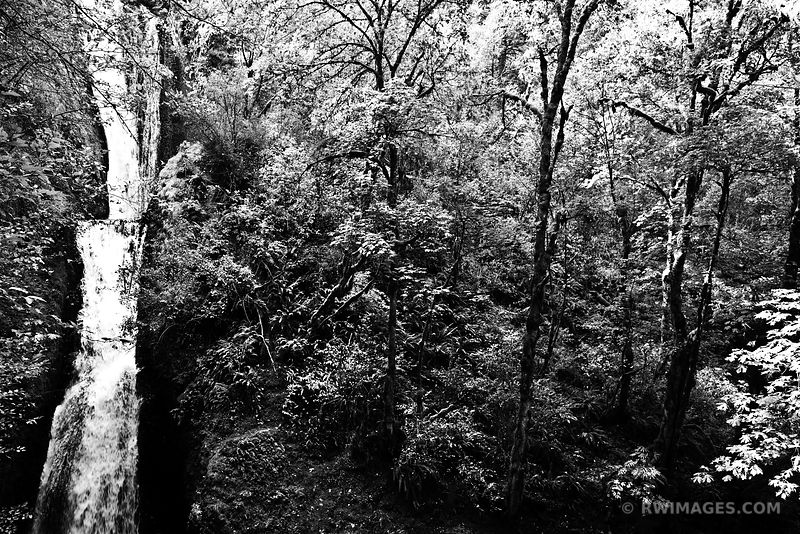 BRIDAL VEIL FALLS COLUMBIA RIVER GORGE OREGON BLACK AND WHITE