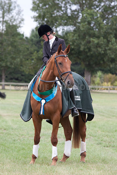 SI_Dressage_Champs_260114_390