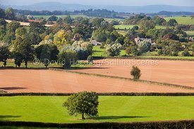 Herefordshire countryside, 20161012002