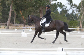 SI_Festival_of_Dressage_300115_Level_7_0281
