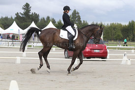 SI_Festival_of_Dressage_310115_Level_4_Champ_0599
