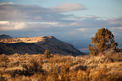 Evening light on Sheepy Ridge from the Tule Lake NWR, California