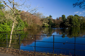 Roath Park Lake, Cardiff, South Wales, UK.