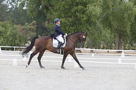 SI_Festival_of_Dressage_310115_Level_8_MFS_1104