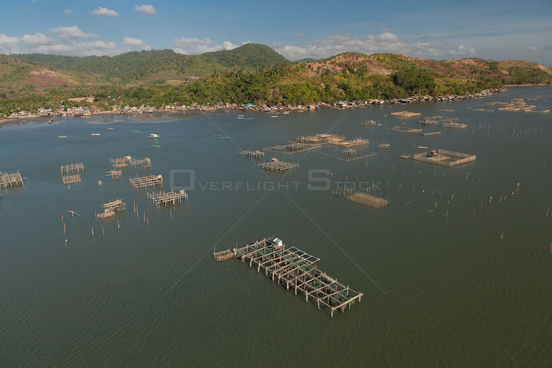 Aerial view of large numbers of fish pens choking Malampaya Sound, habitat of the highly endangered Irrawaddy dolphin, Palawan, Philippines, April 2010