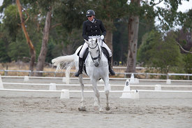 SI_Festival_of_Dressage_300115_Level_6_NCF_0189