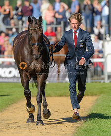 Ludwig Svennerstal and KING BOB - The final trot up, Burghley Horse Trials 2013.