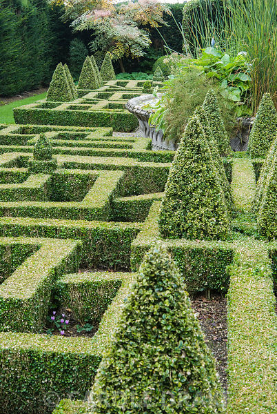 Geometric knot garden of box framed within yew walls, with central basket pond from the Great Exhibition of 1851. Bourton House, Bourton-on-the-Hill, Moreton-in-Marsh, Glos, UK
