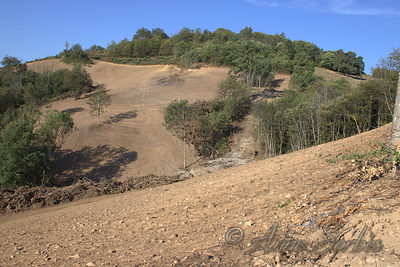 Deforestation and destruction of a wet meadow in Beynat, Limousin, France photos