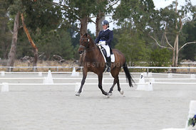 SI_Festival_of_Dressage_310115_Level_8_MFS_1113