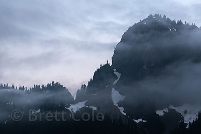 Fog over mountains near Carter Falls, Mount Rainier National Park, Washington