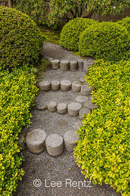 Rustic Round Concrete Steps in Seattle's Japanese Garden