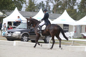 SI_Festival_of_Dressage_310115_Level_6_7_MFS_0630