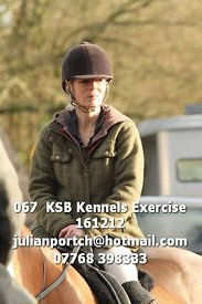 067__KSB_Kennels_Exercise_161212