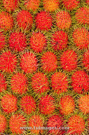 red rambutan fruits in arranged patterns