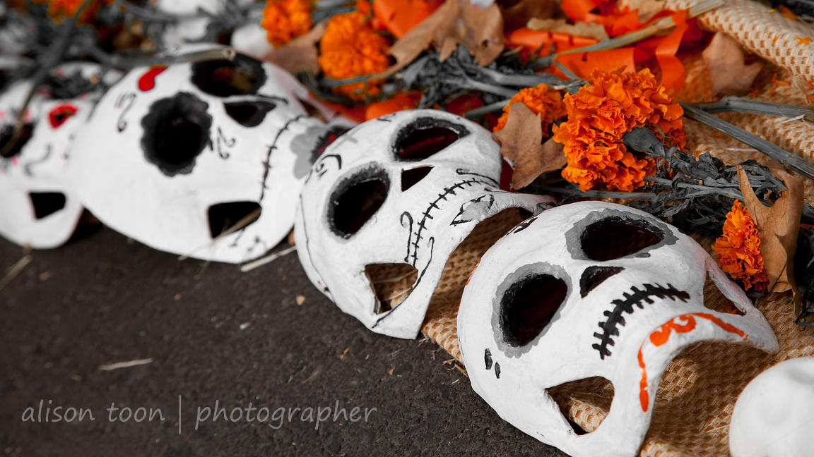 Day of the Dead: Día de los Muertos photos
