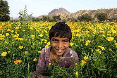 Marigold flower farmers near Amba village, Rajasthan, India