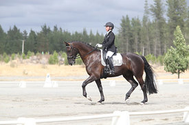 SI_Festival_of_Dressage_310115_Level_1_Champ_0688