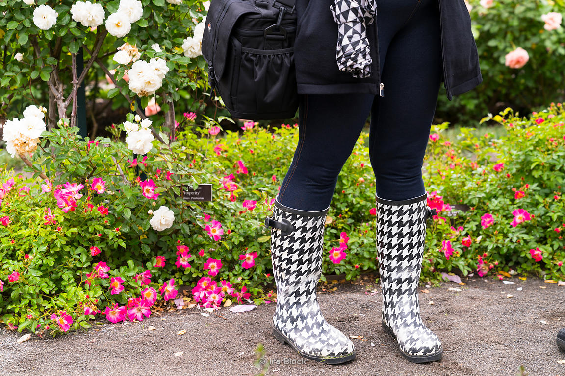 A visitor in plaid at the New York Botanical Gardens in New york City.